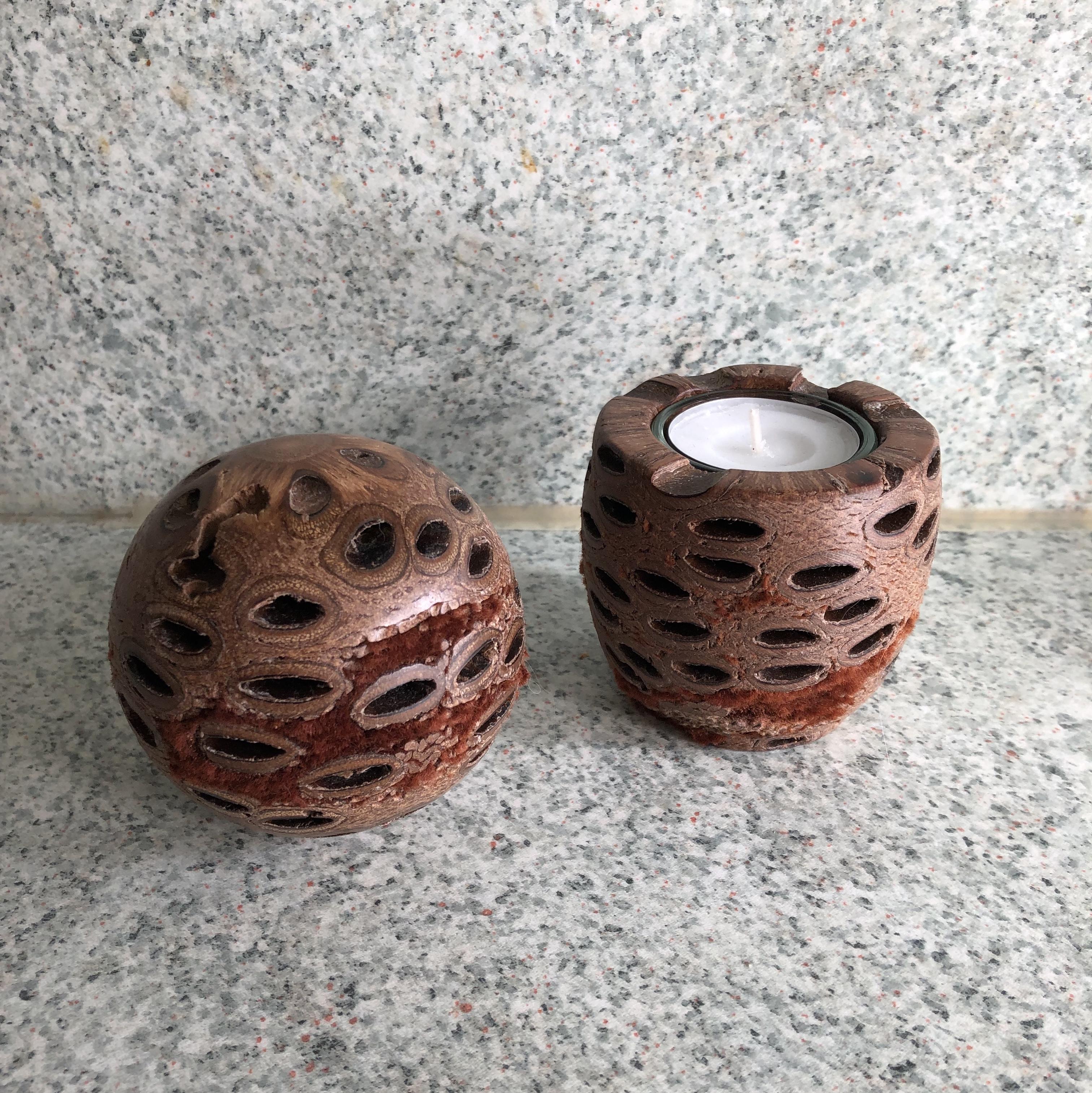 Banksia-Zapfen von Engelbert Warzelhan