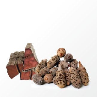 Jarrah-Zaunpfähle und Banksia-Zapfen